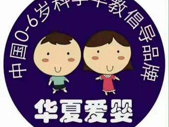 启赋华夏爱婴国际早教(新悦城店)