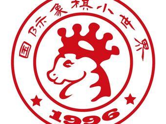上海国际象棋小世界棋艺俱乐部(陆家嘴店)
