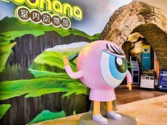 zoonana室内动物园