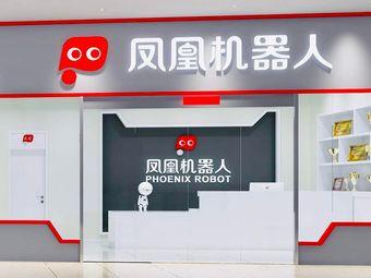 凤凰机器人(仙林东城汇校区)