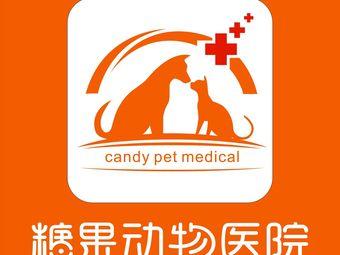 糖果宠物医院