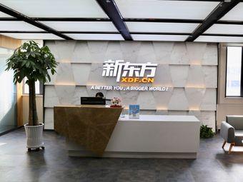 新东方大学生发展中心(安宁校区)