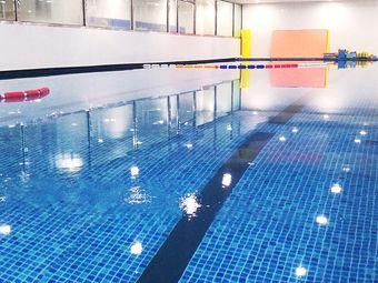 飞鱼家国际亲子游泳中心(茂业店)