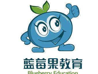 蓝莓果教育(新城区体育场校区)