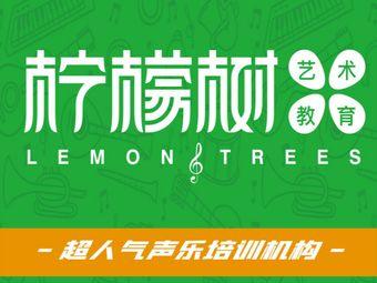 柠檬树声乐艺术教育培训(万达校区)