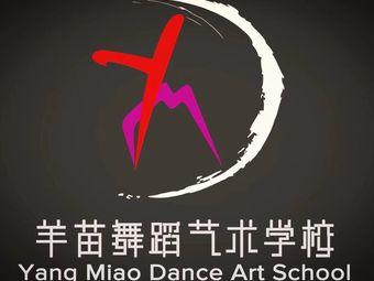 羊苗舞蹈艺术学校