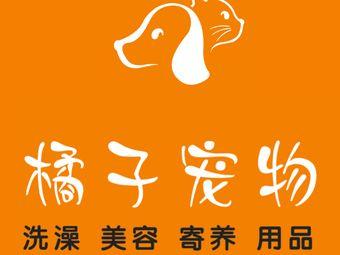 橘子宠物生活馆