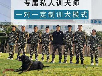 莫利莫训犬学校(新都校区)