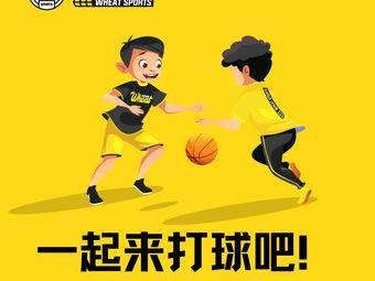 小麦篮球馆(汉广店)