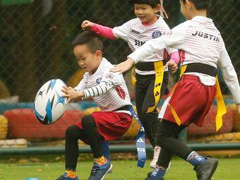 辛巴橄榄球运动培训