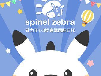 思彼诺未来学园Spinel Zebra(望京店)