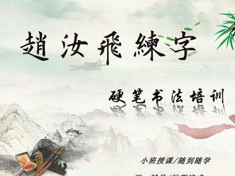 赵汝飞练字(地王广场店)