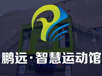 鹏远·智慧运动馆