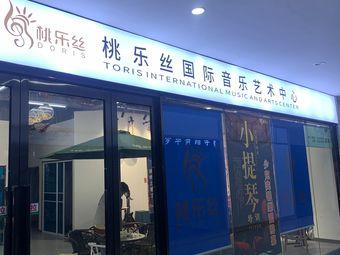 桃乐丝国际音乐艺术中心(彩虹城店)