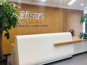 新东方大学生发展中心(盘旋路校区)