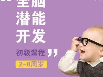 南京七田国际全脑潜能开发