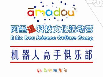 阿墨逗樂高科技文化活動營(泗涇店)