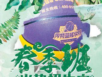 秀特篮球学院(吴江水秀店)