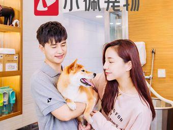 PETKIT小佩宠物(珠海店)
