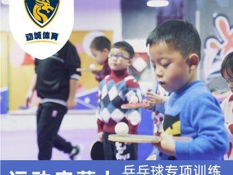 动城体育乒乓球综合馆