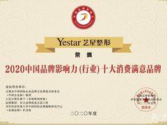 Yestar艺星整形的图片