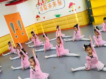华夏未来舞蹈学校(长风中心)