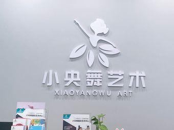 小央舞国际艺术中心(世茂店)