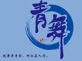子知青舞舞蹈艺术培训