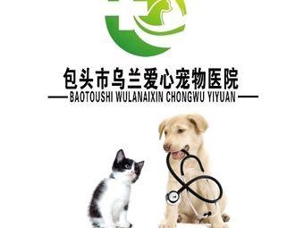 乌兰爱心宠物医院