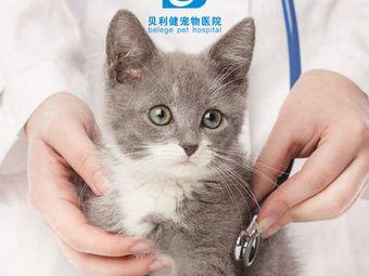 贝利健24小时宠物医院(谢家湾分院)