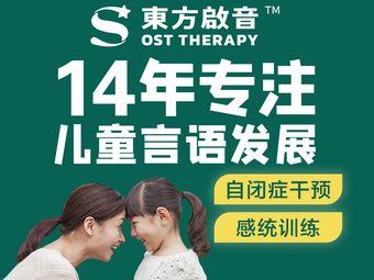 东方启音•言语治疗•自闭症干预•感统训练(广州维多利中心)