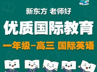 新東方國際部·國際教育(和平天津中心校區)