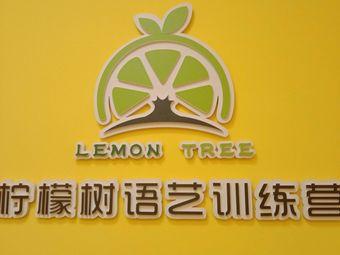 柠檬树语艺训练营