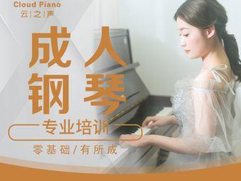 深圳云之声钢琴(民治店)