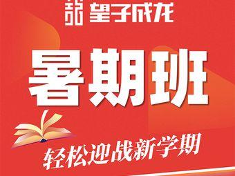 望子成龙学校(龙泉校区)