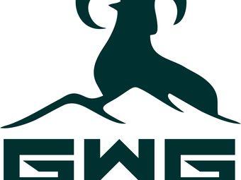GWG青少儿综合体能训练中心