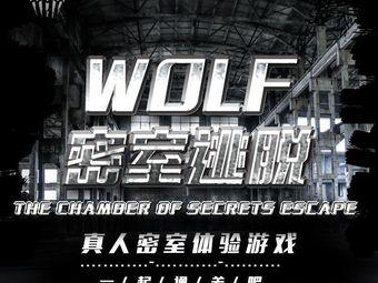 wolf密室逃脱(西二路店)