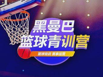 黑曼巴篮球训练营
