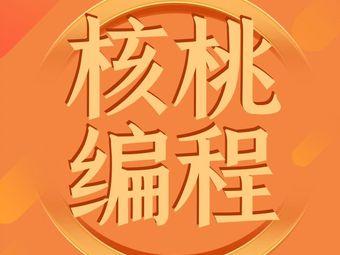 核桃编程(盛唐校区)
