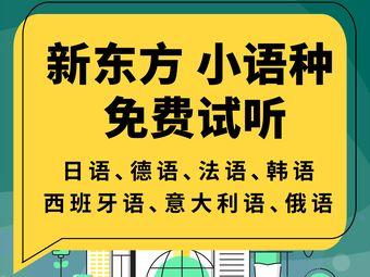 新东方小语种(中关村校区)
