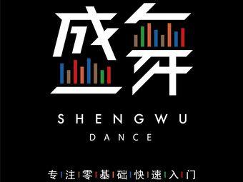 盛舞舞蹈(高新店)
