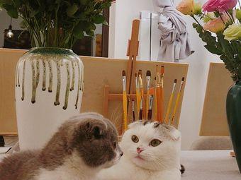 猫+画室 美术工作室