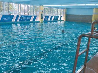 斯博特国际游泳培训中心(星光店)