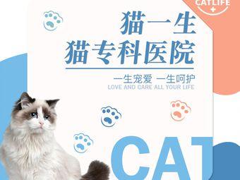 猫一生猫专科医院(青年中路店)