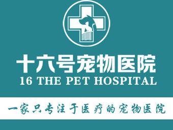 十六号宠物医院(桥南总店)