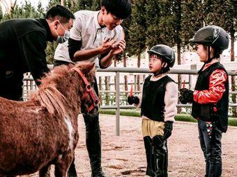 南京国际赛马场马术培训
