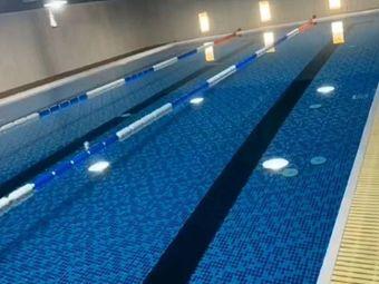 飞鱼儿童游泳俱乐部