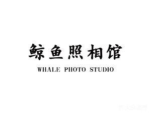 鲸鱼照相馆