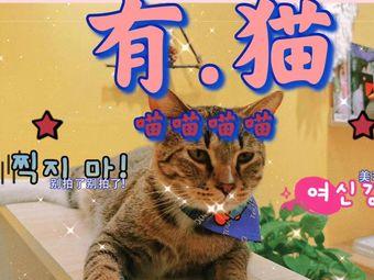 桃柒手作·手工·撸猫(中山北路店)
