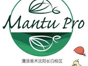 漫涂美术MantuPro(长白旗舰校区)